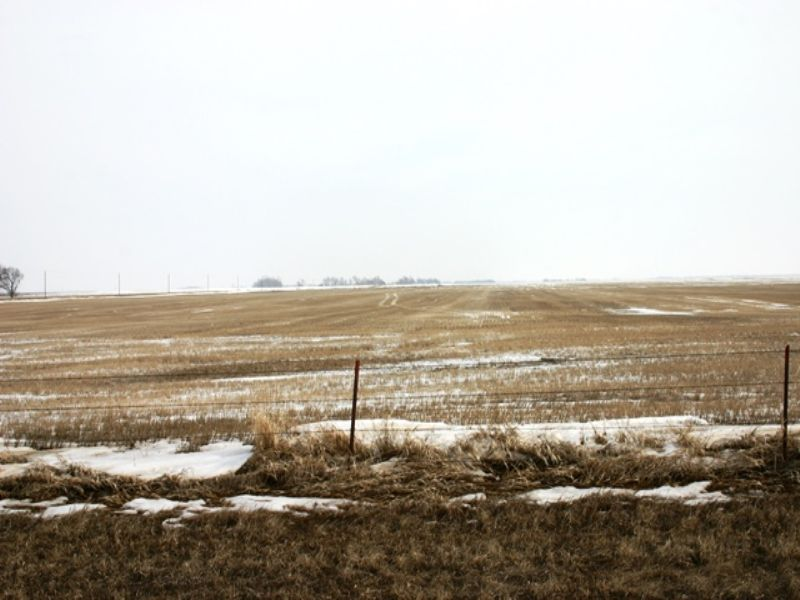 80 Acre Farmland Auction Sd : Iroquois : Kingsbury County : South Dakota