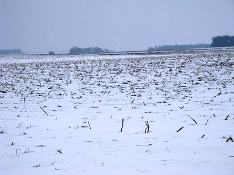 160 Acres High Caliber Farmland Sd : Oldham : Kingsbury County : South Dakota