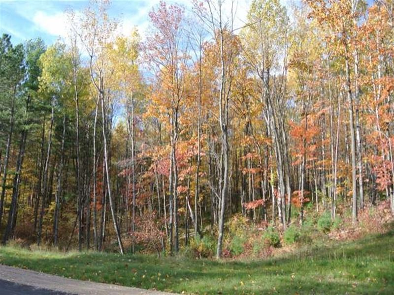 Mls 163052 - Lot 5 Sutton : Minocqua : Oneida County : Wisconsin