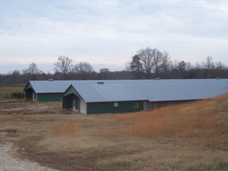 Polutry / Breeder Farm : Homer : Banks County : Georgia