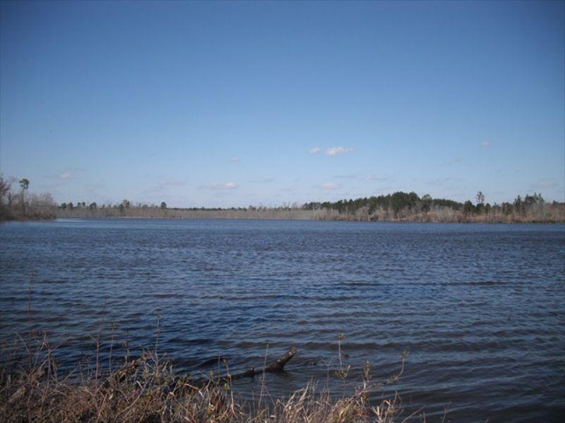 85 Acre Lake : Wrightsville : Johnson County : Georgia