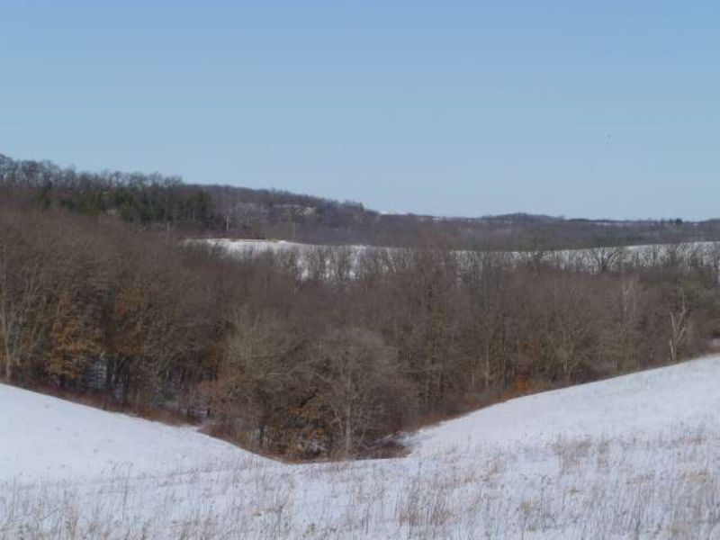 65 Acres Of Great Hunting Land : Dodgeville : Iowa County : Wisconsin
