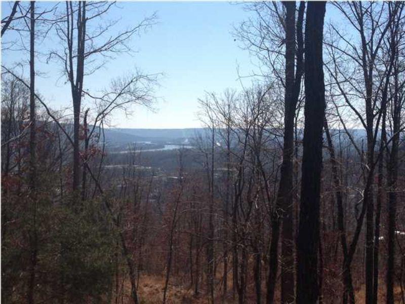 Foreclosed 40+/- Acres : South Pittsburg : Marion County : Tennessee