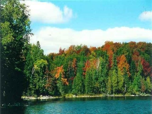 Lot 31 Secluded Point Rd. 1071364 : Michigamme : Baraga County : Michigan