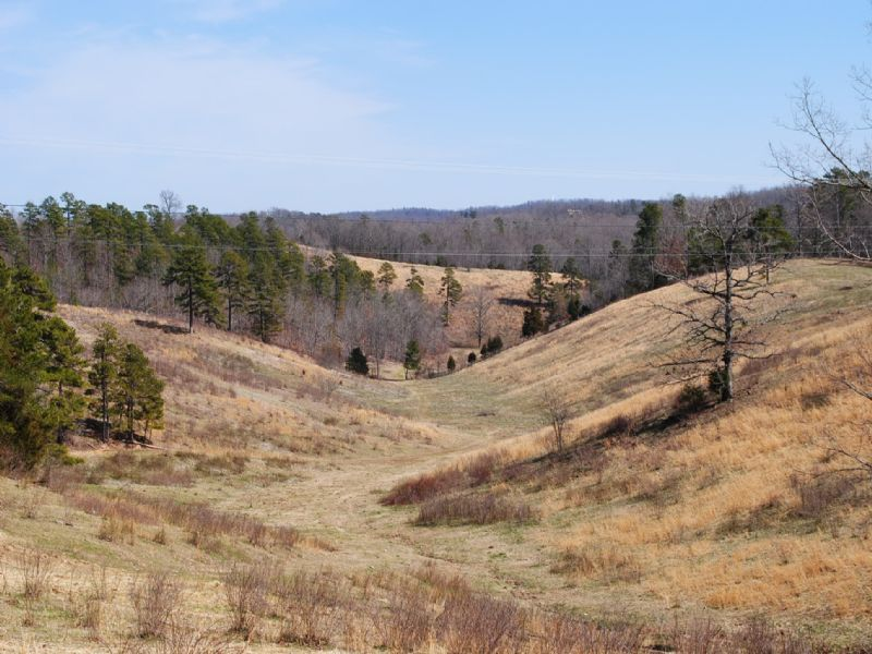 160 Acre Ranch Hwy 5 North : Mountain View : Stone County : Arkansas
