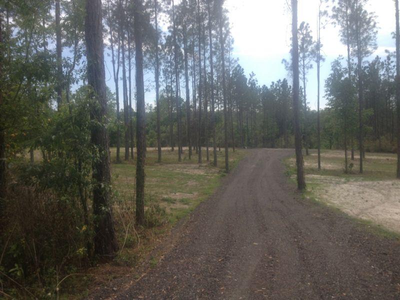 Beautiful 10.4 Acres Zoned Ag : Brooksville : Hernando County : Florida