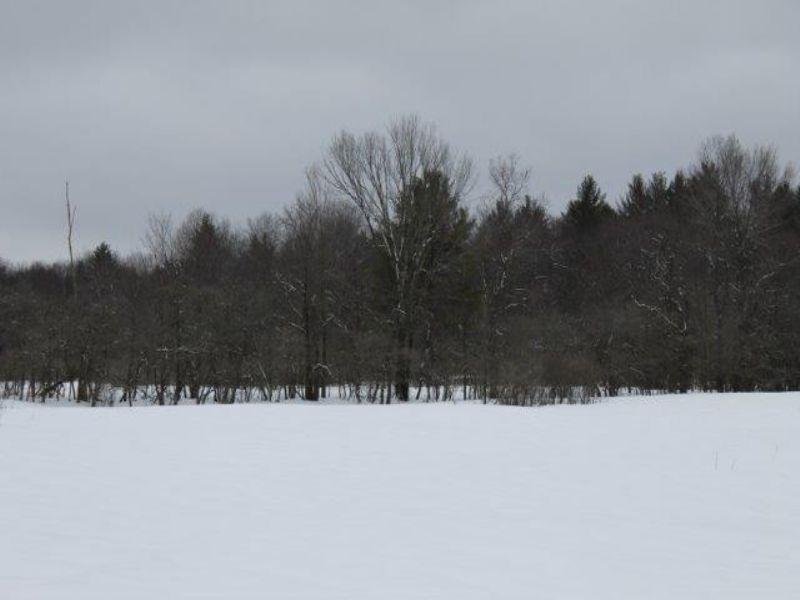 7 Acres Country Acreage Near River : Redfield : Oswego County : New York