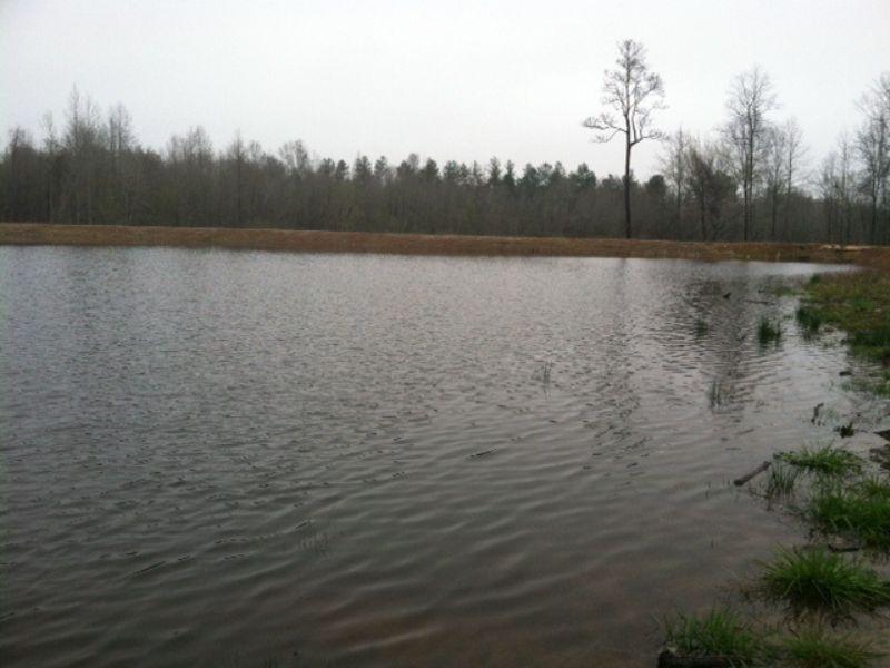 2,500 Sf Home Overlooking Lake : Jeffersonville : Twiggs County : Georgia