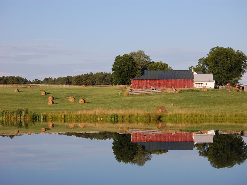 Virginia Crop Land For Sale : Broadnax : Brunswick County : Virginia