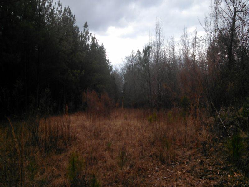 22111sa131 Caskey : Farmerville : Union Parish : Louisiana