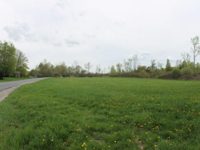 15 Acres Farmland Owner Financing : Root : Montgomery County : New York