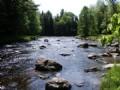 338 Acres  Amazing River Frontage