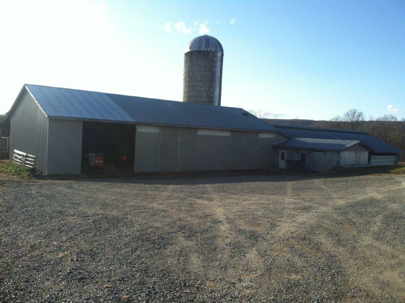 34 +/- Acres Complete Dairy Farm : Turbotville : Montour County : Pennsylvania