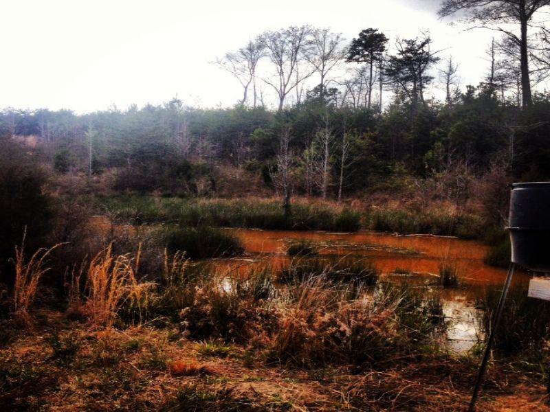 Cheapest Per Acre : Belton : Greenville County : South Carolina