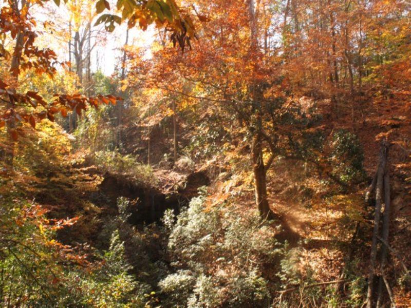 Historic Southern Plantation : Marshallville : Macon County : Georgia