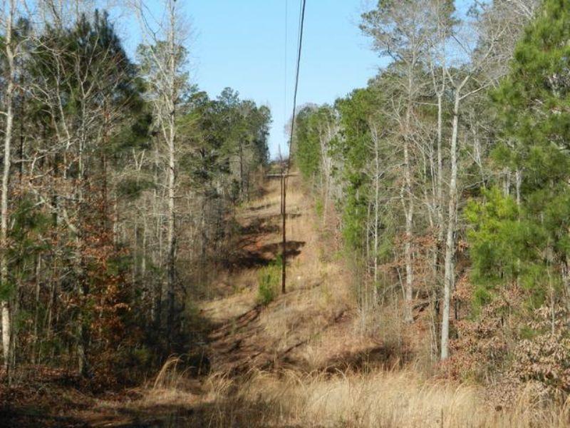 160+/- Acres Investment Timberland : Alexander City : Tallapoosa County : Alabama