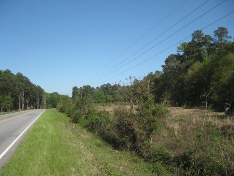Cattle Creek 10 Tract : Branchville : Dorchester County : South Carolina