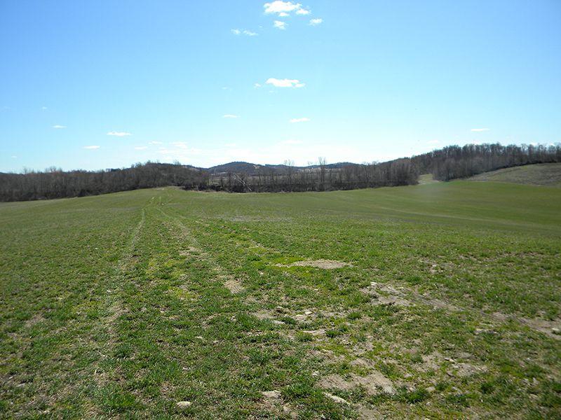 1075 Acres Crop Farmland House : Mentz : Cayuga County : New York