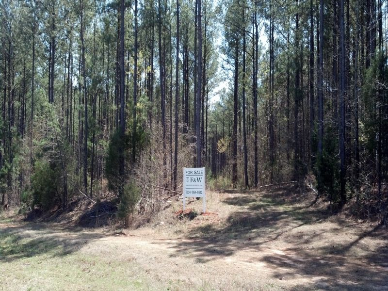 Hudgins Tract : Mile East Of Cusseta : Chambers County : Alabama