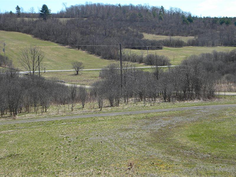 125 Acres Tillable Farmland Woods : Tyrone : Schuyler County : New York