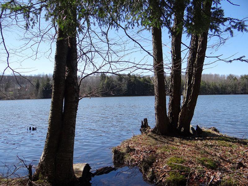 Lake Lot Frontage On Private Lake : Smyrna : Chenango County : New York