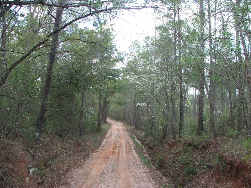Murphy Bridges : South Of Irwinton : Wilkinson County : Georgia