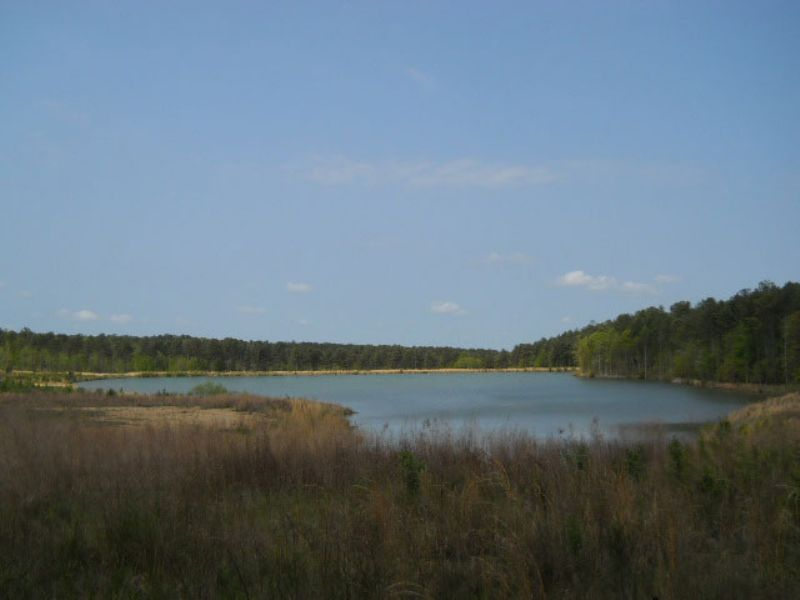 322.85 Ac On Phillips Rd : Warm Springs : Meriwether County : Georgia