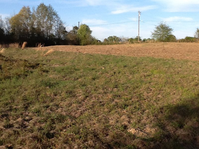 Hwy 331 South Land : Highland Home : Crenshaw County : Alabama