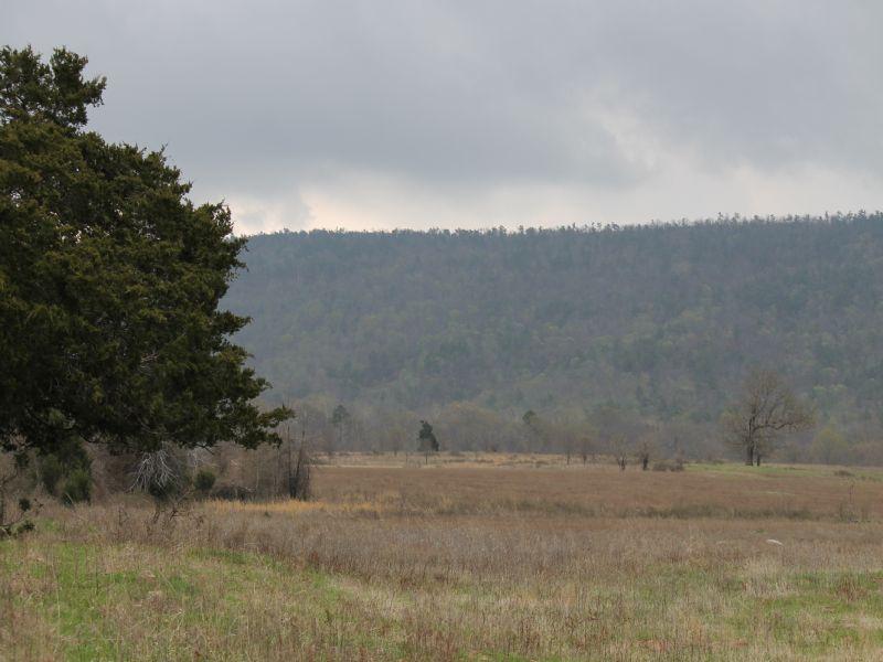 Daisy Meadows Ok Land Terms W/ Pond : Daisy : Pittsburg County : Oklahoma