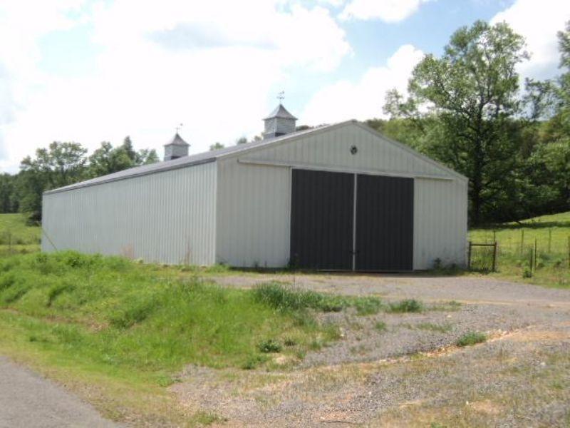 80+/- Acres Pasture And Timberland : Attalla : Etowah County : Alabama