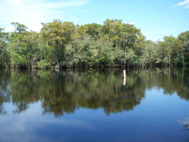Longview Road Tract #2 : Kelly : Bladen County : North Carolina
