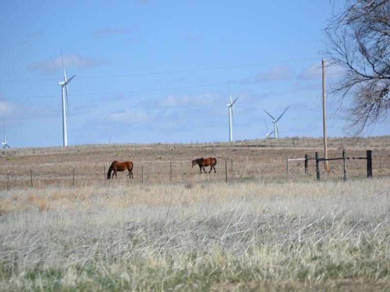 Fleming Acreage - 80.38 Acres : Fleming : Logan County : Colorado
