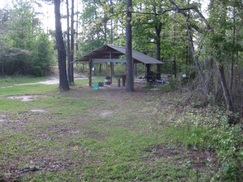 83 Acres : Lumberton : Lamar County : Mississippi
