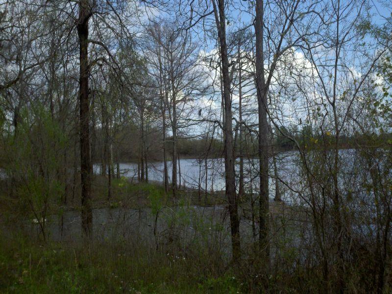 22021sb064 P Fields M : Grayson : Caldwell Parish : Louisiana