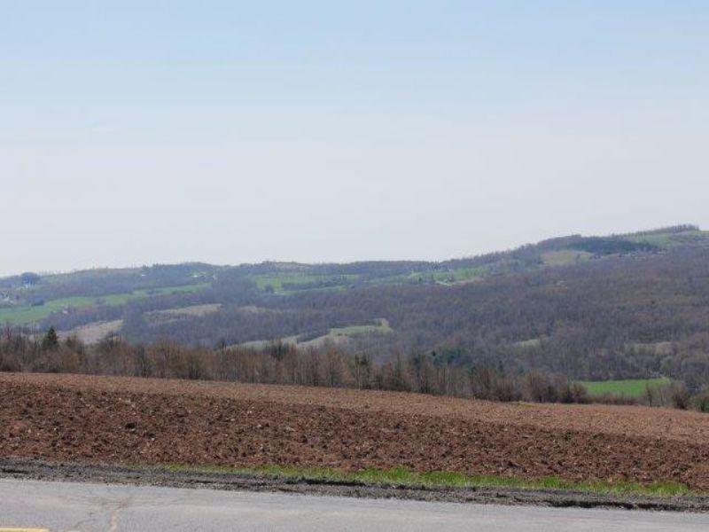 11 Acres Farmland Mountain Views : Lincoln : Madison County : New York