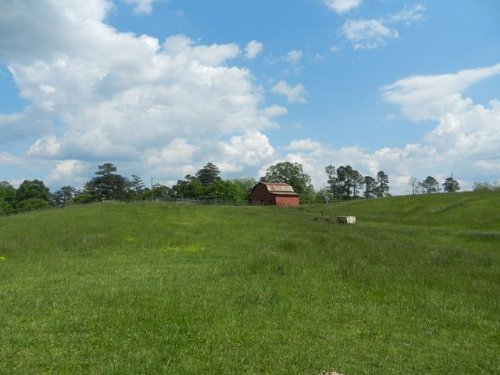 72.2 +/- Acres Pastureland : Ashland : Clay County : Alabama