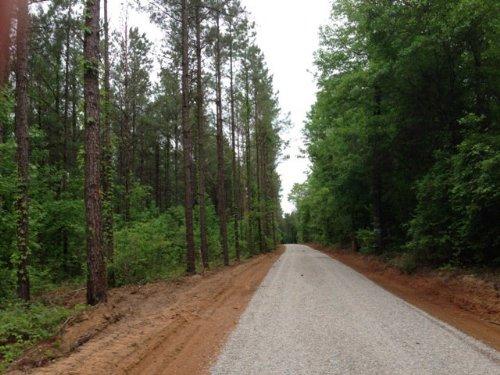 15 +/- Ac On Smart Rd In Troy : Troy : Pike County : Alabama