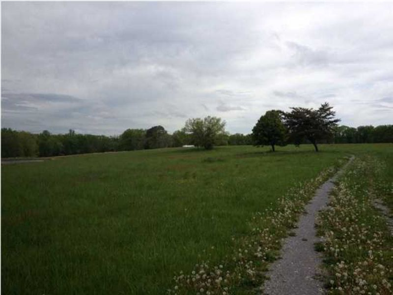 167.08 +/- Acres Beautiful Acres : Soddy Daisy : Hamilton County : Tennessee