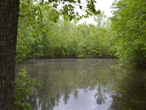 9.5 Acre Private Cabin Retreat : Jonesville : Union County : South Carolina