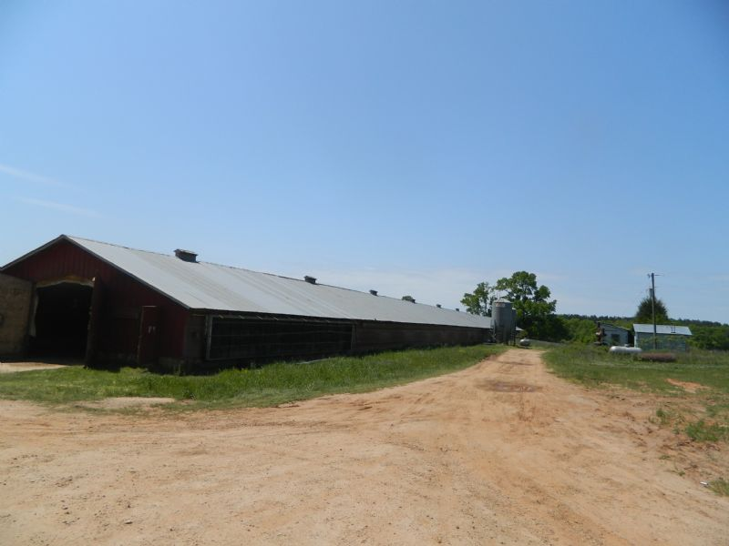 130.8 Acre Cattle/poultry Farm : Union Point : Greene County : Georgia