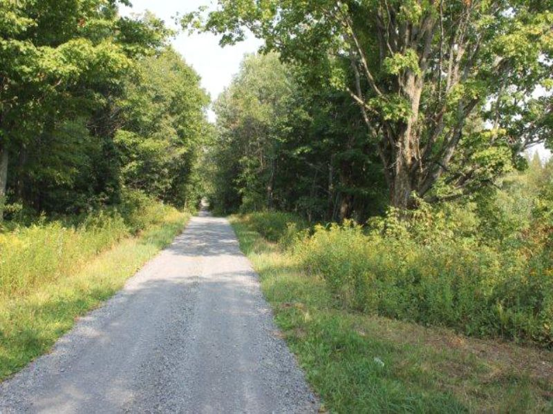 57 Acres Near State Land Atv Trails : Montague : Lewis County : New York