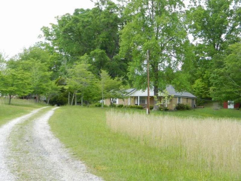 160+/- Acres In Shady Grove : Goodwater : Clay County : Alabama