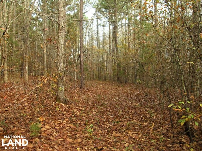 Private Recreational Homesite : Easley : Anderson County : South Carolina