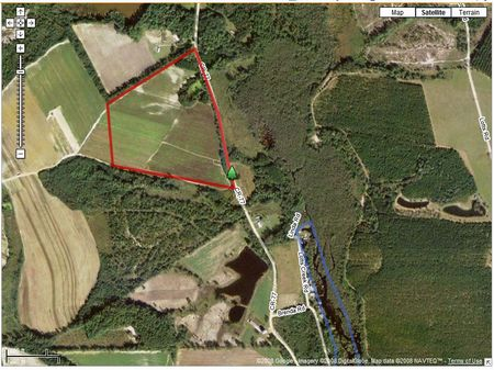 37 Acres Of Open Irrigable Land : Portal : Bulloch County : Georgia