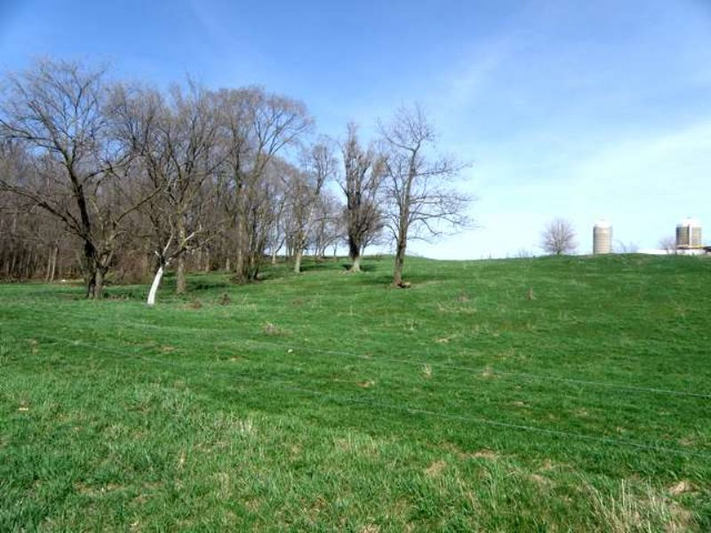 73 Acres With Tillable And Timber : Johnson Creek : Jefferson County : Wisconsin