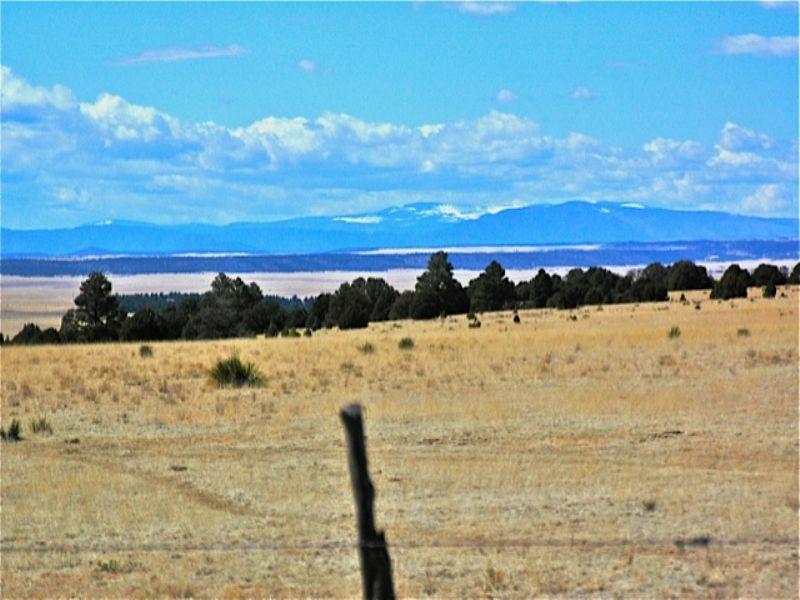 Big Moon Ranch : Watrous : San Miguel County : New Mexico