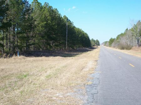 186 (+-) Acres, Timber, Duck Pond : Americus : Sumter County : Georgia