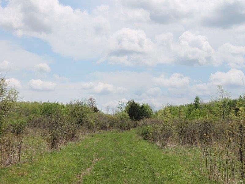 85 Acres Development Potential : Charleston : Montgomery County : New York
