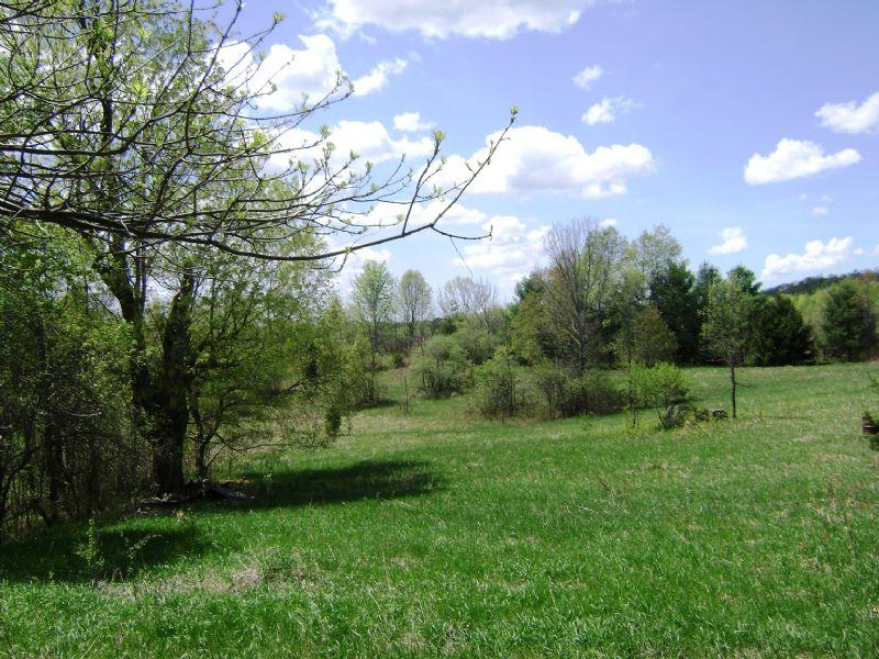 62 Acres Edwards, NY : Edwards : Saint Lawrence County : New York