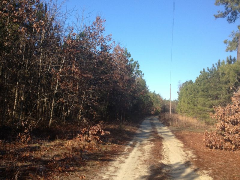 104 Acres : Chesterfield : Chesterfield County : Virginia